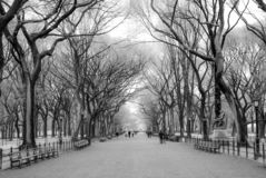 The concourse on the mall in central park stock image