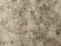 Concrete†‹texture†‹ 库存照片