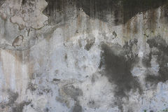 Concrete. Wall background and  texture Stock Image
