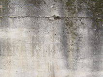 Concrete Stock Image