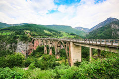 Concrete arch Durdevica Bridge over Tara River Canyon, mountain valley and forest landscape in Durmitor National Park, Montenegro. Royalty Free Stock Image