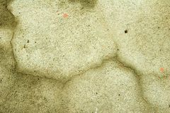 Concrete background with a crack. Partuially wet concrete background Stock Photo