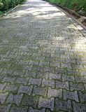 Concrete block footpath in the park royalty free stock photo
