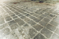Concrete brick pavement Royalty Free Stock Photography