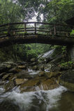 concrete bridge with wood look. waterfall and green forest Royalty Free Stock Images