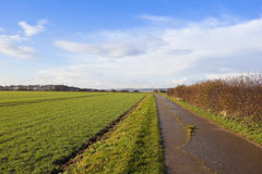 Concrete bridleway Royalty Free Stock Photo
