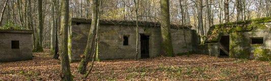 Concrete buidlings in het bos bij Kamp Marguerre, Wereldoorlog I Stock Afbeelding