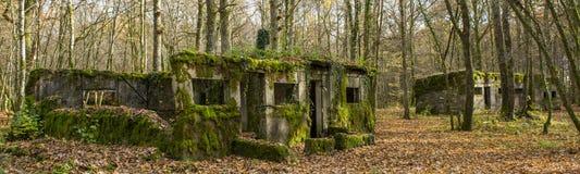 Concrete buidlings in het bos bij Kamp Marguerre, Wereldoorlog I Royalty-vrije Stock Foto's