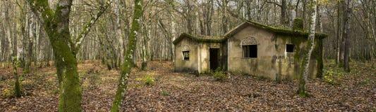Concrete buidlings in het bos bij Kamp Marguerre, Wereldoorlog I Royalty-vrije Stock Afbeeldingen