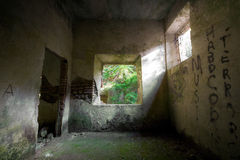 Concrete Decay 02. An abandoned house in decay in the forest Royalty Free Stock Photos