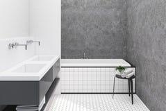 Concrete en witte badkamers, betegelde ton Stock Afbeeldingen
