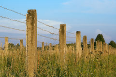 The concrete fence with barbed wire Royalty Free Stock Image