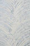 Concrete floor background Stock Image