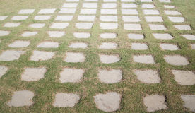 Concrete floor with green grass Royalty Free Stock Photos
