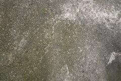 Concrete flooring Stock Photography