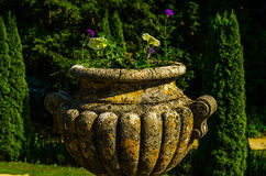 Concrete flower pots in the garden on a pedestal stylized antiqu Stock Image