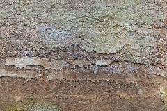Concrete foundation of an old house Royalty Free Stock Photo