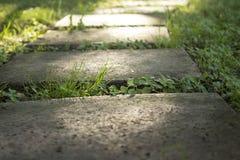 Concrete garden stepping stones pathway stock photos