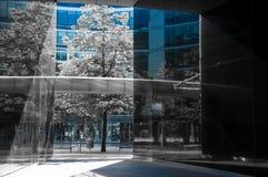 Concrete glaswildernis van Warshau Zwart-wit foto van eigentijdse architectuur met slechts blauwe zichtbare kleur royalty-vrije stock foto's