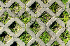 Concrete grid. On rhombus shape with grass Stock Photos
