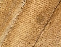Concrete imprint wood Stock Photography