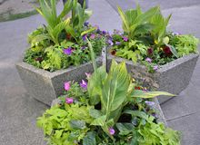 Concrete Jardiniere with Beautiful Flowers Arrangement from Downtown of Niagara-on-the-Lake in Ontario province. Of Canada on 25th June 2017 Stock Images