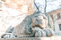 Concrete lion sculpture Royalty Free Stock Images