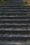 Concrete old stairs background. Stock Image