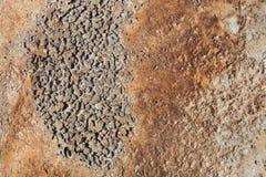 Concrete oppervlakte met roest Royalty-vrije Stock Fotografie
