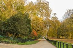 Concrete path along the tree in public park in autumn. Long concrete path along the tree in public park in autumn royalty free stock photography