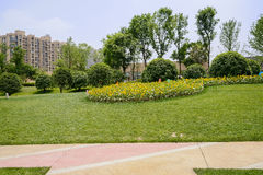 Concrete path in grassy lawn before dwelling buildings on sunny Stock Photos