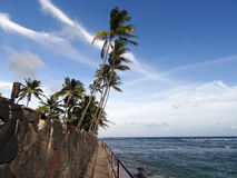 Concrete path with metal railing along cliff shore with coconut Stock Image
