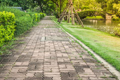Concrete path walkway beside green bush at public park with sunlight background. Royalty Free Stock Photo