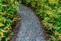 Concrete Pathway in garden Royalty Free Stock Images