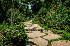 Concrete Pathway in garden. Concrete pathway in the park Stock Photography