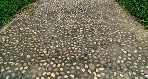 Concrete Pathway in garden Stock Image
