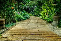 Concrete Pathway in the park Stock Photography
