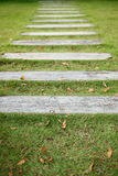 Concrete pathway pavement step on green grass. Front yard garden Royalty Free Stock Photo