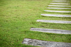 Concrete pathway pavement step on green grass. Front yard garden Royalty Free Stock Photos