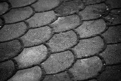 Concrete pavement with grass Royalty Free Stock Image