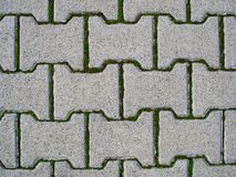 Concrete pavement. With green grass. Texture or background stock images