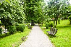 Concrete pavement pathway in the green city park with green trees and empty benches. Garden in urban city in the morning scene in stock image