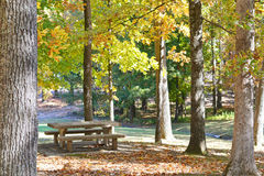 Concrete picnic table in fall Royalty Free Stock Photography