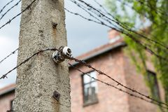 Concrete pillar for electric barbed wire in Auschwitz stock images