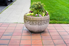 Concrete planter Royalty Free Stock Photography
