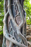 Concrete pole with sculpture decoration. Of tree roots Royalty Free Stock Photo