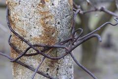 Concrete post met roestige draad Stock Fotografie