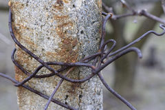 Concrete post with rusty wire Stock Photography