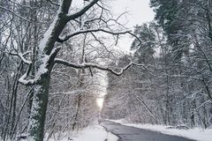 concrete road in beautiful snowy stock image