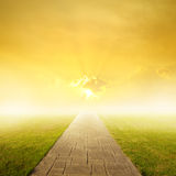 Concrete road in Grass fields and Sunset Stock Image